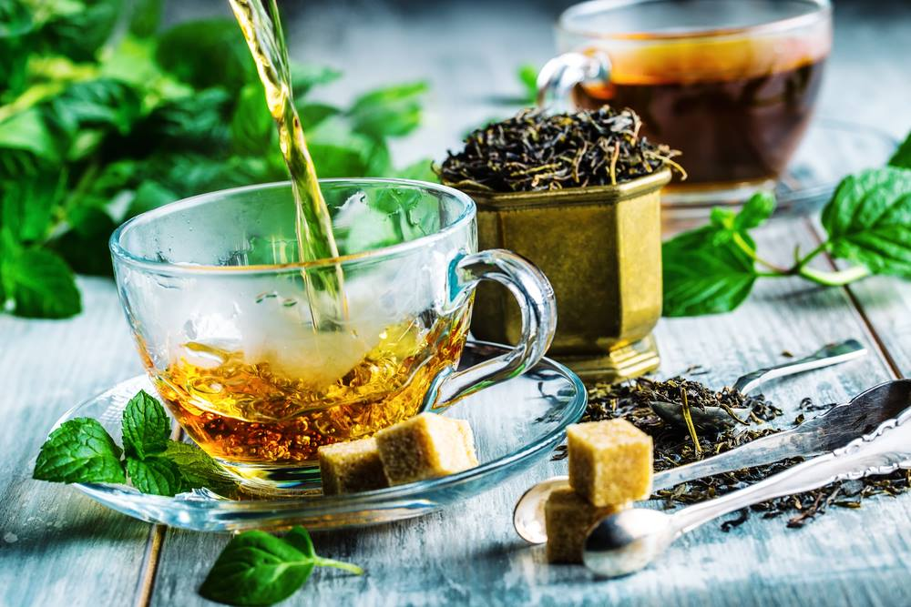learn how to make chaga tea